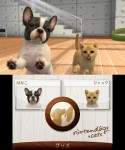 nintendogs-cats-1