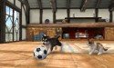 nintendogs-cats-3